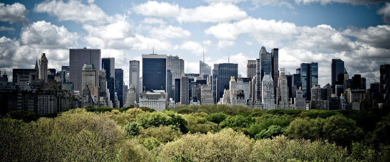 Concurso de ideas en Central Park #Manhattancall